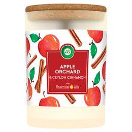 Świeca Air Wick Essential Oils o Zapachu Sadu jabłkowego i cejlońskiego cynamonu